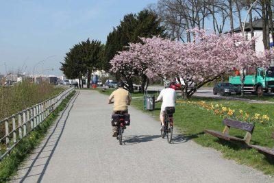 Elbvororte Hamburg Fahrradtour mit Stadtführer