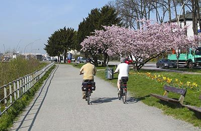 Fahrradtouren Hamburg