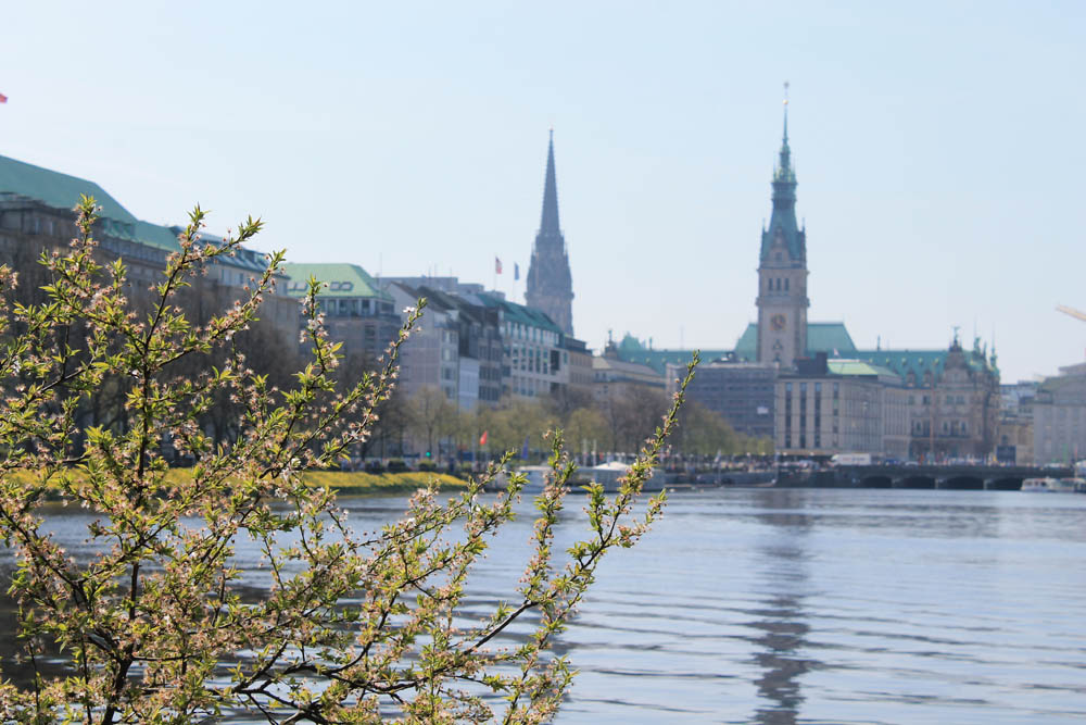 Binnenalster Hamburg Führung
